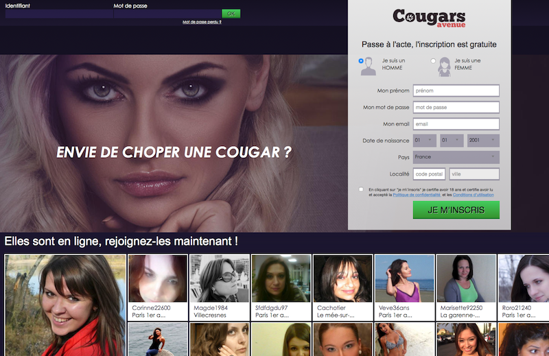 cougars-avenue